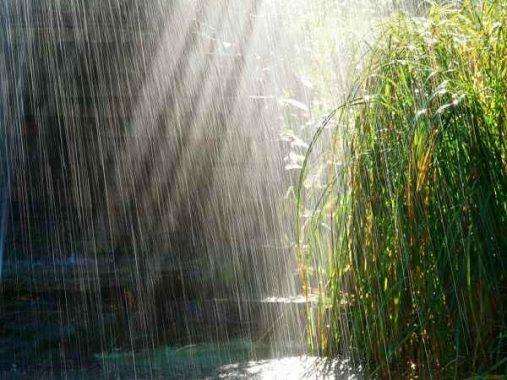 Ngủ mơ thấy trời mưa là điềm báo gì ? Đánh lô đề số mấy ?